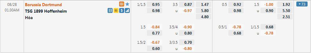 Tỷ lệ kèo Dortmund vs Hoffenheim