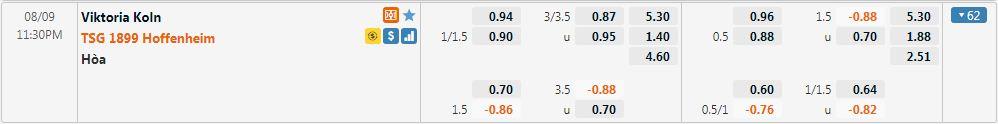 Tỷ lệ kèo Viktoria vs Hoffenheim