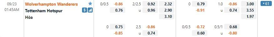 Tỷ lệ kèo Wolves vs Tottenham