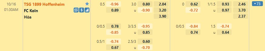 Tỷ lệ kèo Hoffenheim vs Koln